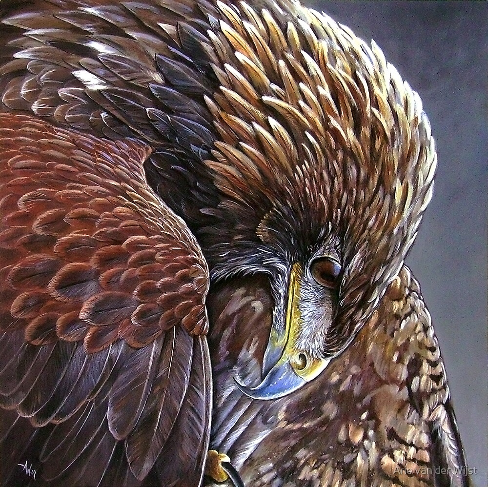 Golden Eagle by Arie van der Wijst