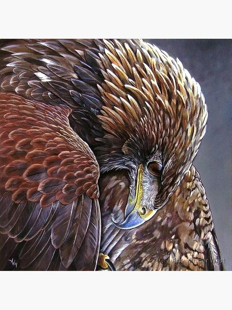 Golden Eagle by Aart