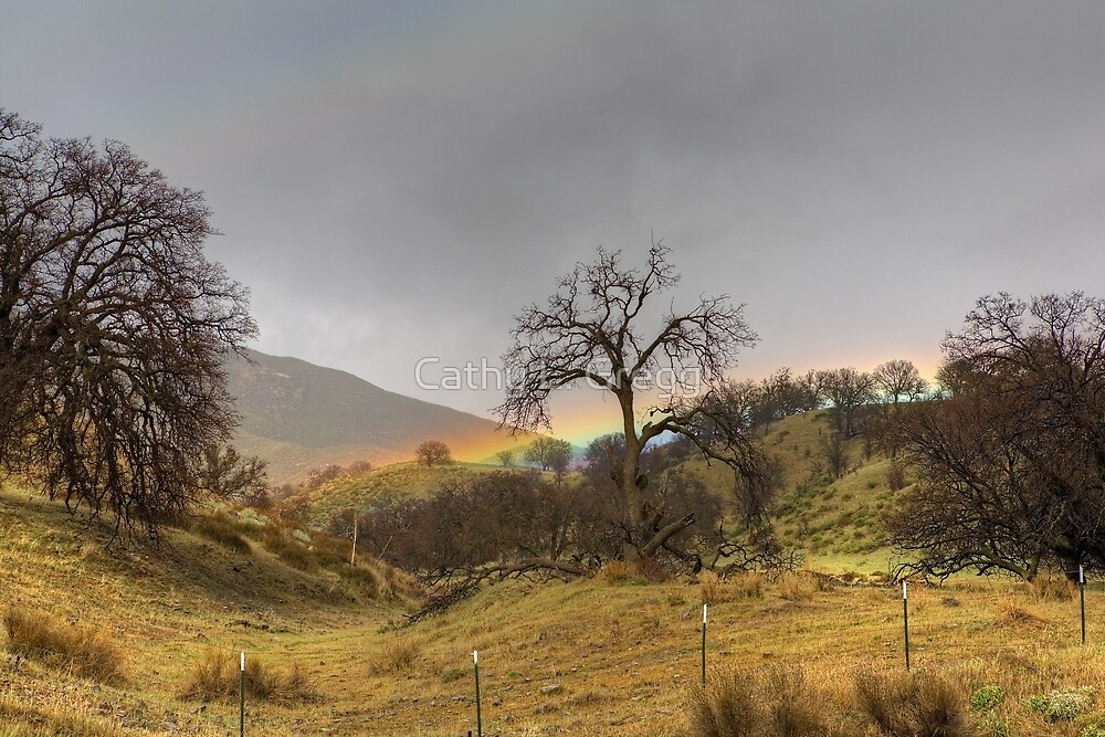 Low Lying Rainbow by Cathy L. Gregg