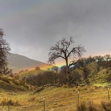 Low Lying Rainbow by cathygregg