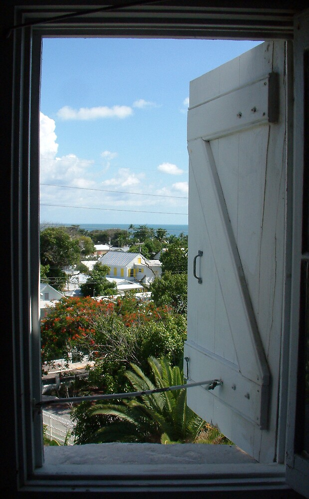 Through A Window Lightly by Cayobo