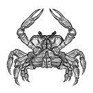 Crab Sketch by zaxophona