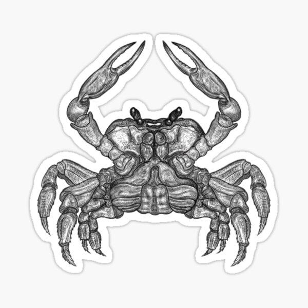 Crab Sketch Sticker