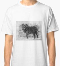 Affenpinscher, rare dog breed. Classic T-Shirt