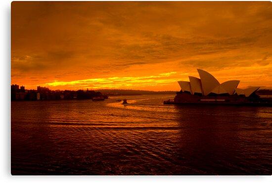 Sunset by David Petranker
