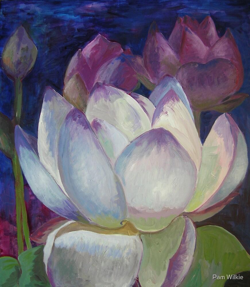 Lotus Dreaming by Pam Wilkie