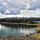 Nottely Dam North Georgia by raindancerwoman