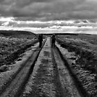 Walking the Cleveland Way, North Yorkshire National Park, UK by GeorgeOne