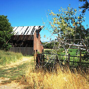 Carol's Barn by jansnow