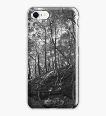 Pikes Peak State Park iPhone Case/Skin