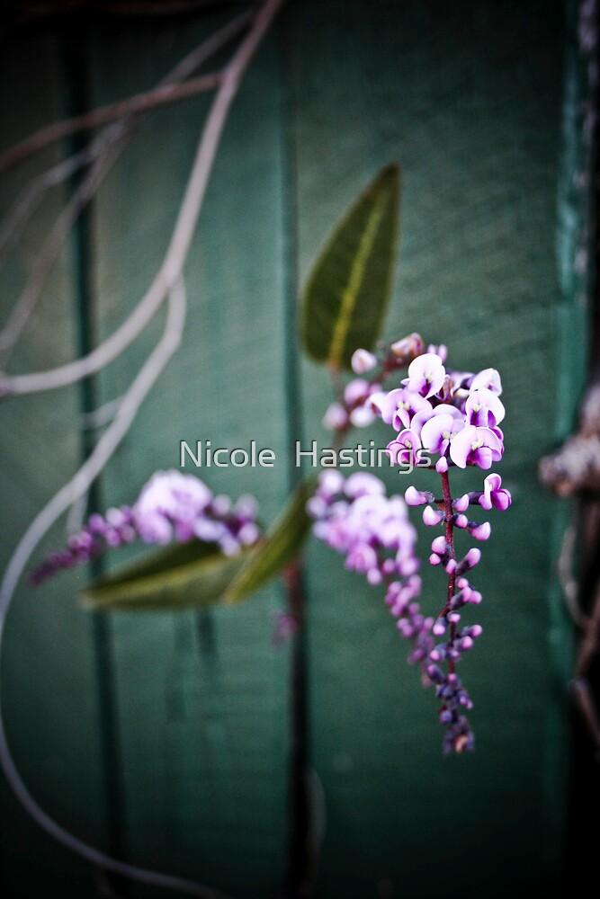 Purple by Nicole  Hastings