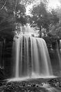 Winter, Russell Falls, Tasmania by BRogers