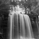 Winter, Russell Falls, Tasmania by BRogers