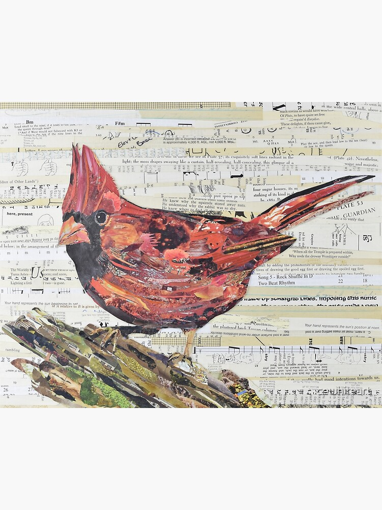 Cardinal Collage by C.E. White - Red Bird by cewhiteart