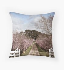 Driveway Throw Pillow
