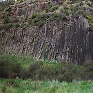 Organ Pipes National Park - Sunbury by Colin  Ewington