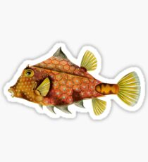 Fish - Art Forms of Nature Sticker