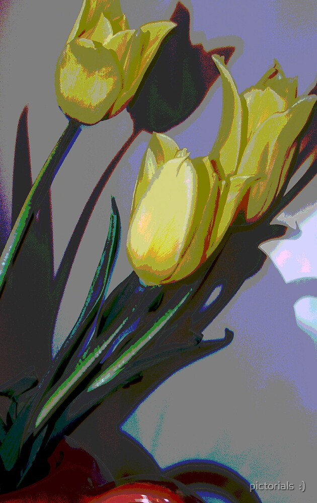 tulips by pictorials  :)