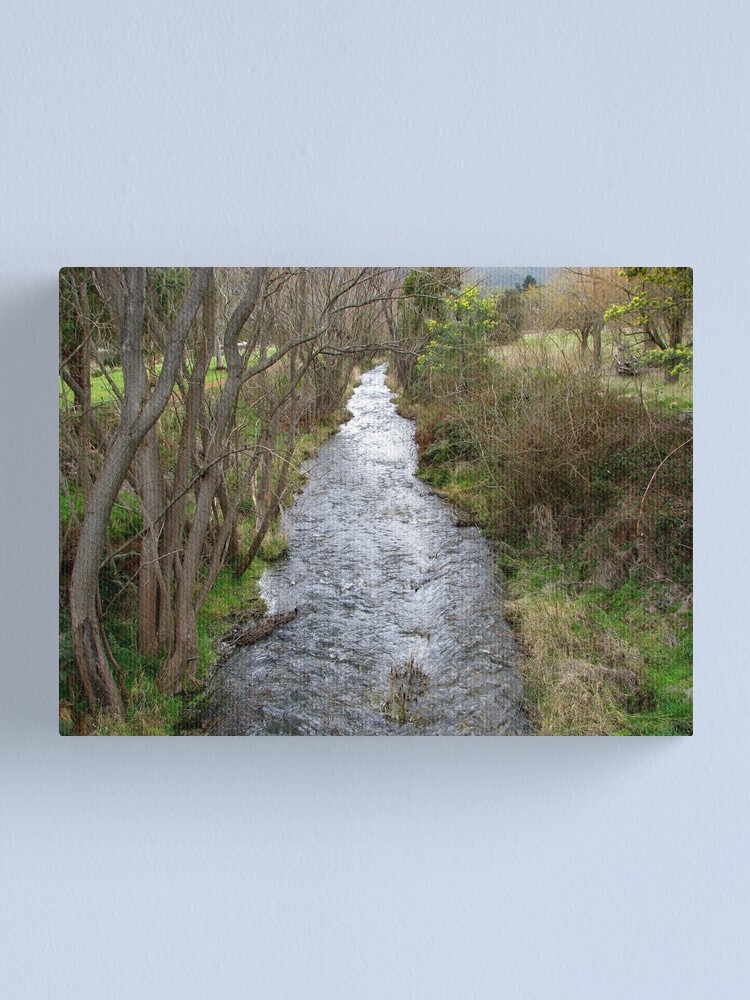 Alternate view of Lachlan Rivulet Canvas Print