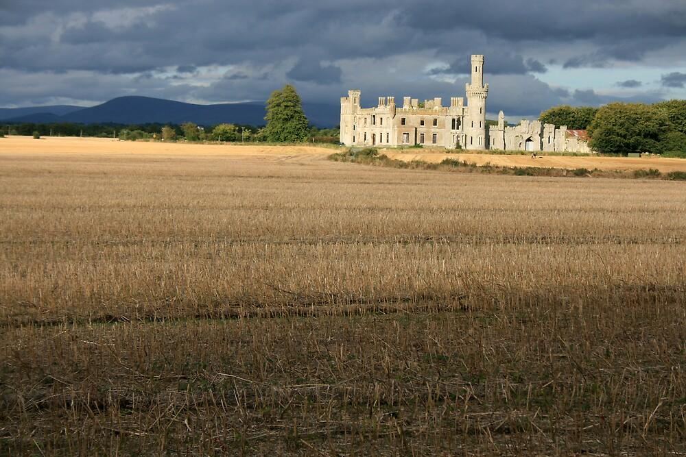 Ducketts Grove castle view 3 by John Quinn