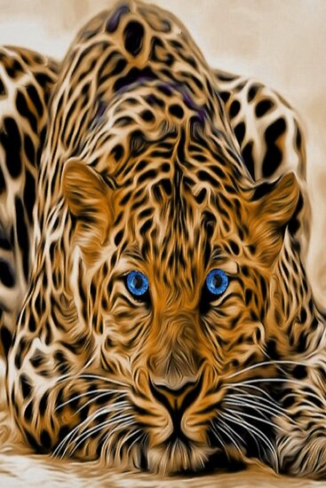 Bright blue eyes leopard cat with orange and black spots by killslammer