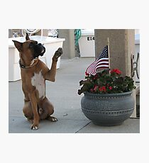 Tyler Salutes the American Flag Photographic Print