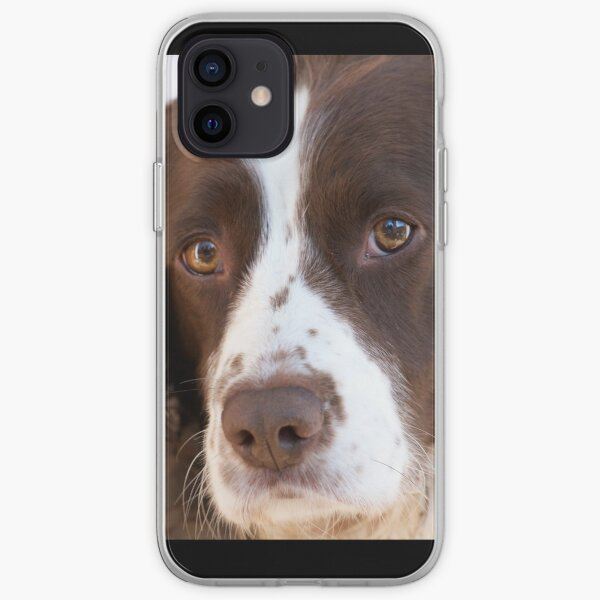 Brown and White Springer Spaniel Portrait iPhone Soft Case
