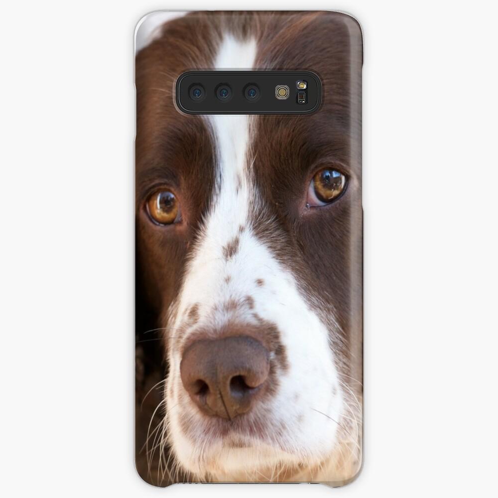 Brown and White Springer Spaniel Portrait Case & Skin for Samsung Galaxy