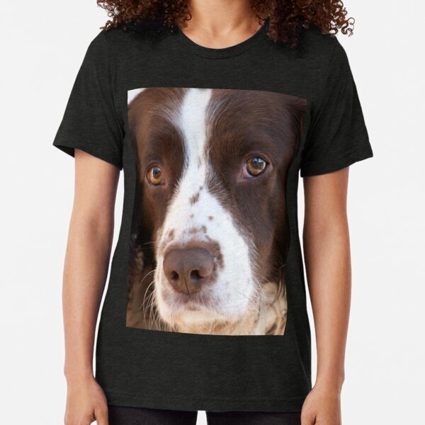 Brown and White Springer Spaniel Portrait Tri-blend T-Shirt
