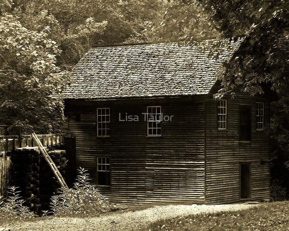 Mingus Mill in Sepia by Lisa Taylor