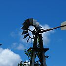Rustic Old Windmill by Lynda   McDonald