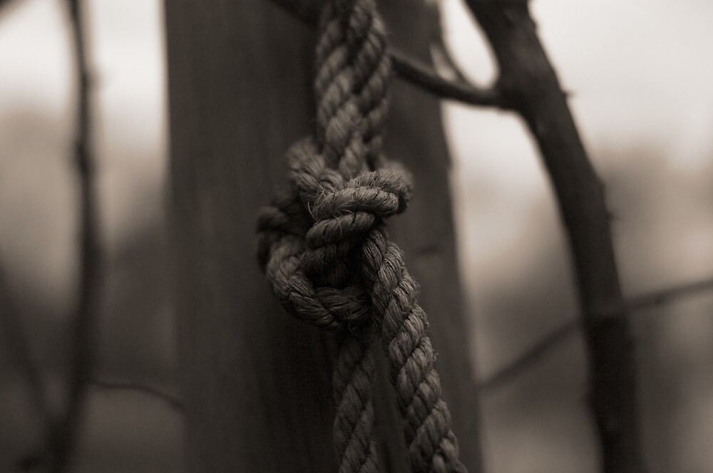 Knot by Oliver Andrews