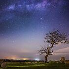 Stargazing tree by elleidau