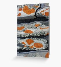 Dry Stone Wall by Amanda Greeting Card