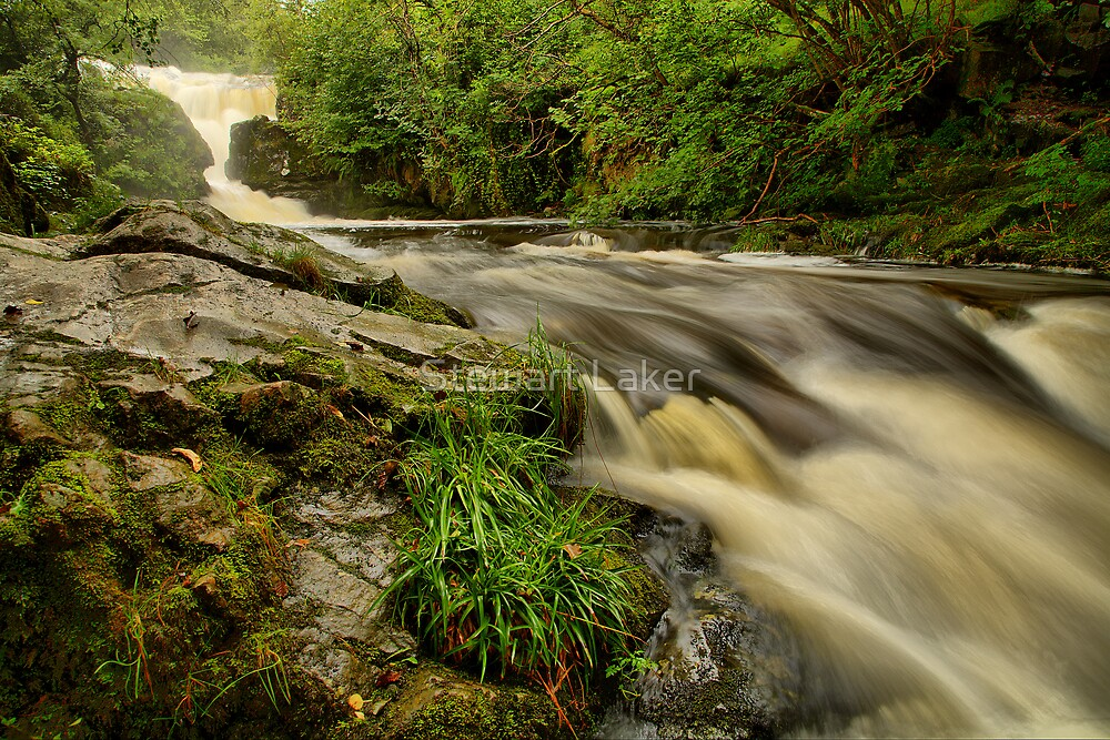 Aira Beck 4 -  High Force. by Stewart Laker