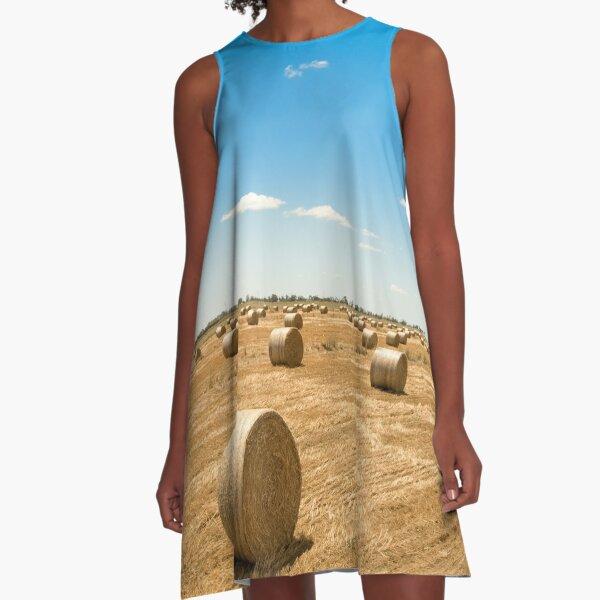 Bales A-Line Dress