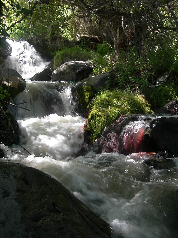 red bubble creek by maloneranger