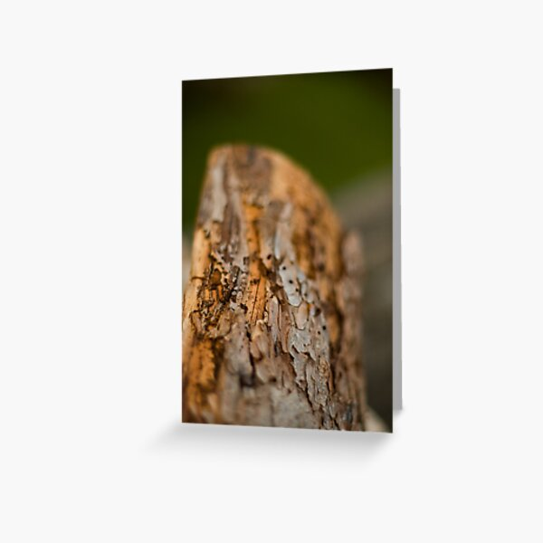 Log Greeting Card