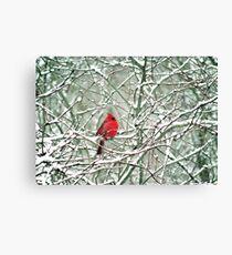 080806-25 Canvas Print