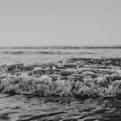 Black and White Pacific Ocean Waves by Leah Flores