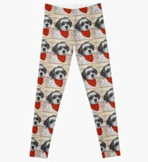 Max the Havanese Leggings