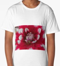 Red and white Dahlia (Dahlia x hortensis) Long T-Shirt