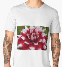 Macro photo of a red and white Dahlia Men's Premium T-Shirt