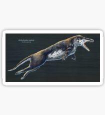 Ambulocetus Natans Restored Sticker