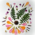petals by Lynne Prestebak