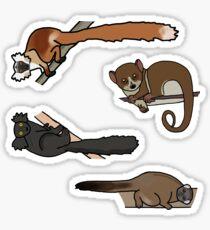 Lokobe Lemur Set Sticker