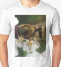 Beautiful Hoverfly in Detail T-Shirt