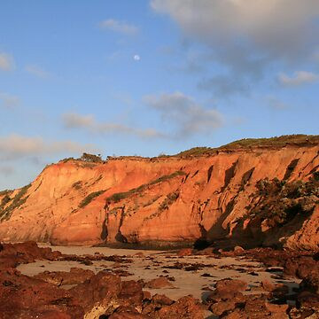 formations of the beach by cassandralilley