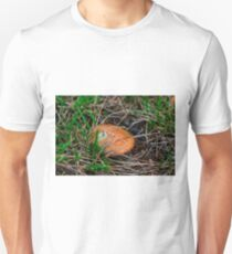 The Gift of the Forest T-Shirt