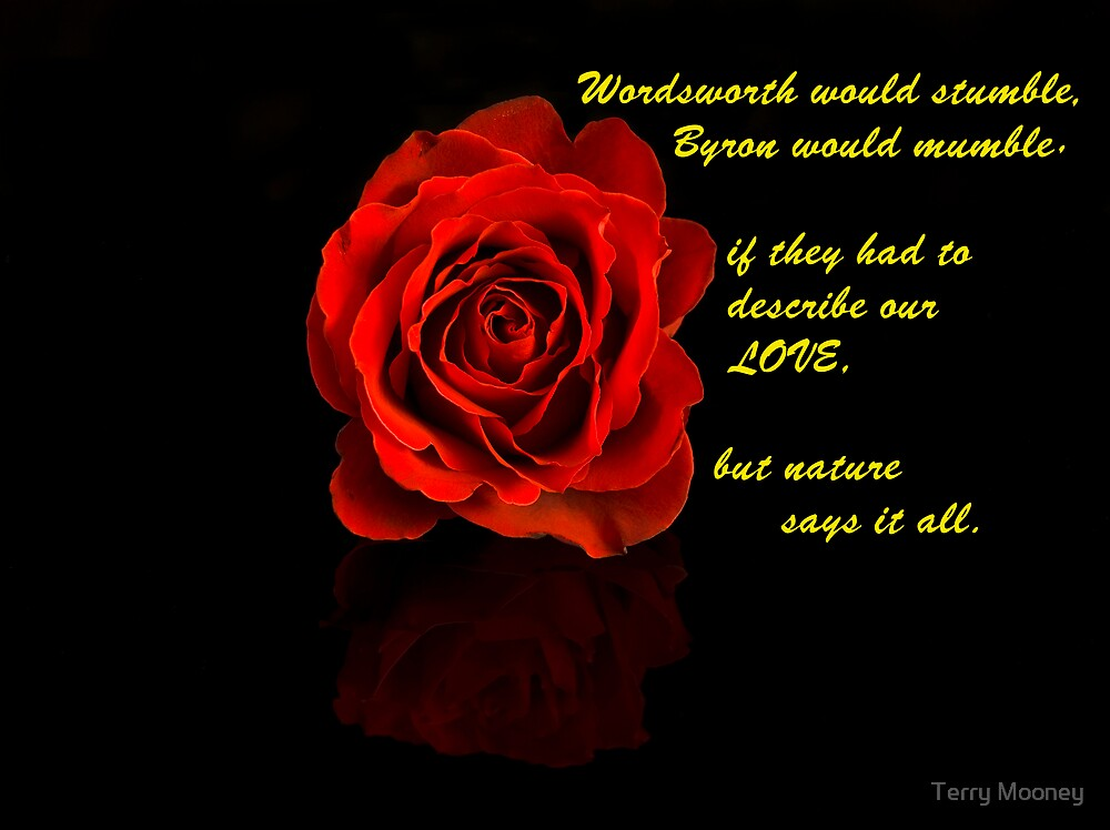 a Rose and a Prose by Terry Mooney